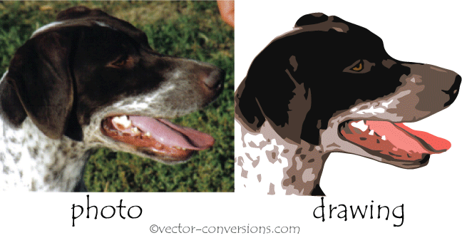 photo vs drawings raster vs vector