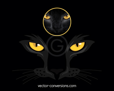 Vector conversion of cat eyes for embroidery