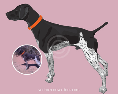 Vector Conversion vector color drawing of dog for specialty printing