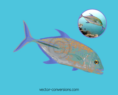 Vector drawing of a fish using limited spot colors