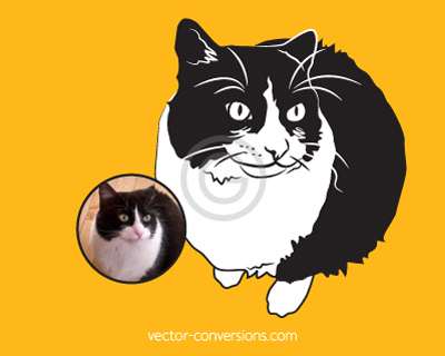 Black and white Vector Conversion of cat for engraving