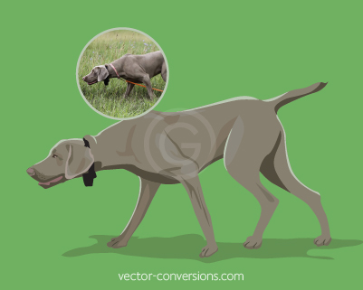 Vector conversion color drawing of dog for specialty promo items