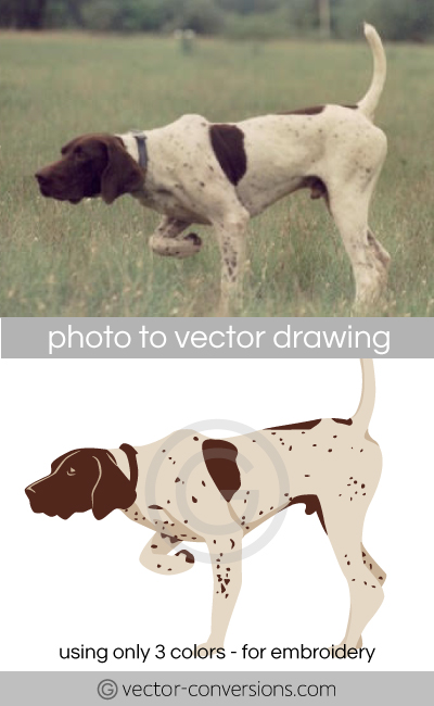 Vectorization from photo to vector drawing