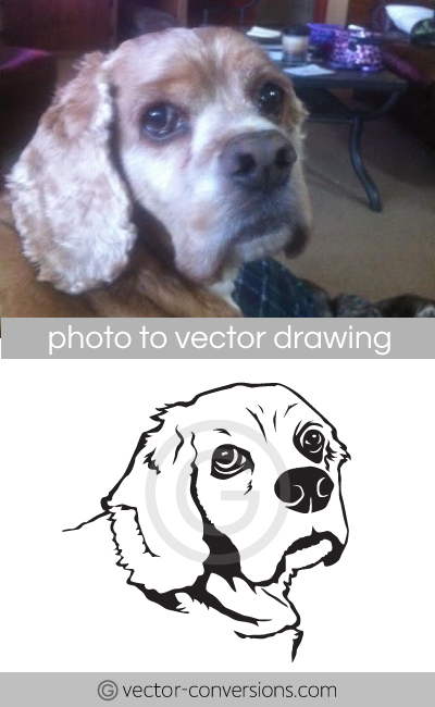 Vector line drawing of a dog