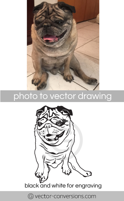 Photo to Vector conversion dog vector line art