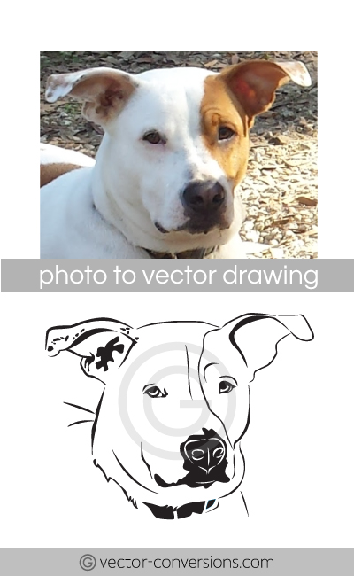Vector drawing of a dog for a stone engraving