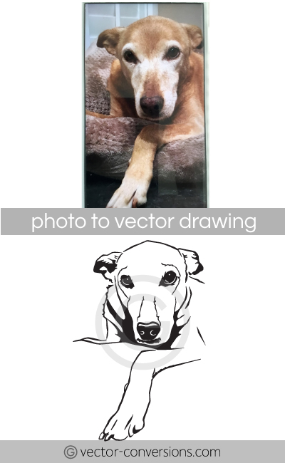 Vector line art drawing of a dog for engraving