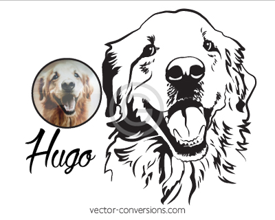 Photo Vector Conversion to Line art suitable for engraving or etching