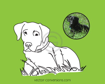 Vector conversion lineart drawing of dog for engraving