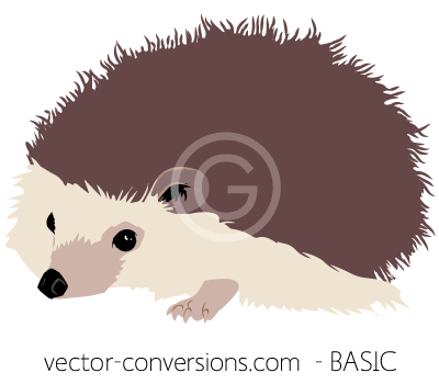 Redraw vector basic level of detail